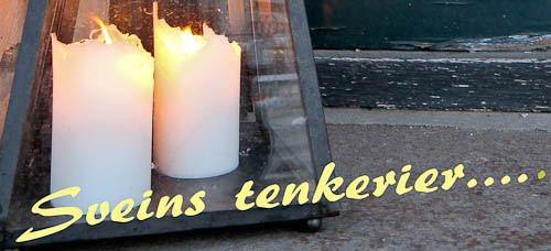 Sveins tenkerier.......
