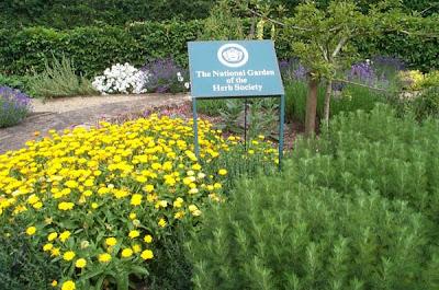 Sulgrave Manor herb garden