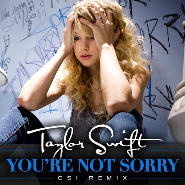 Taylor Swift You Belong With Me Album Cover. Album Cover Taylor Swift.