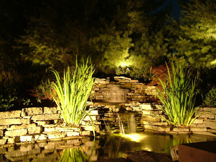 Mike's ponds and lighting