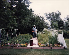Dad in his garden