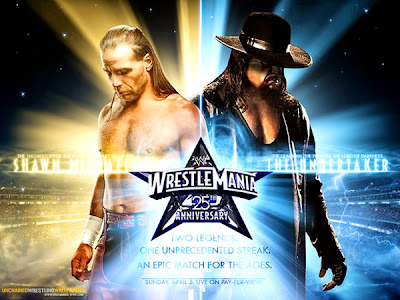 geliş geçmiş en iyi tagteam The-undertaker-vs-shawn-michaels-wrestlemania-xxv
