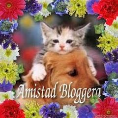 Amistad Bloggera