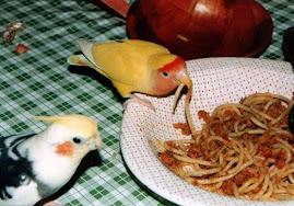 Pippo e Cocco
