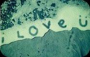 ~No Quiero que Me Finjan Amor#