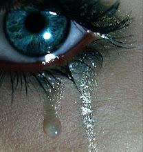 ¿quien no llora por amor?