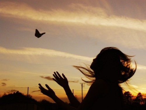 Butterfly flying away - photo#12