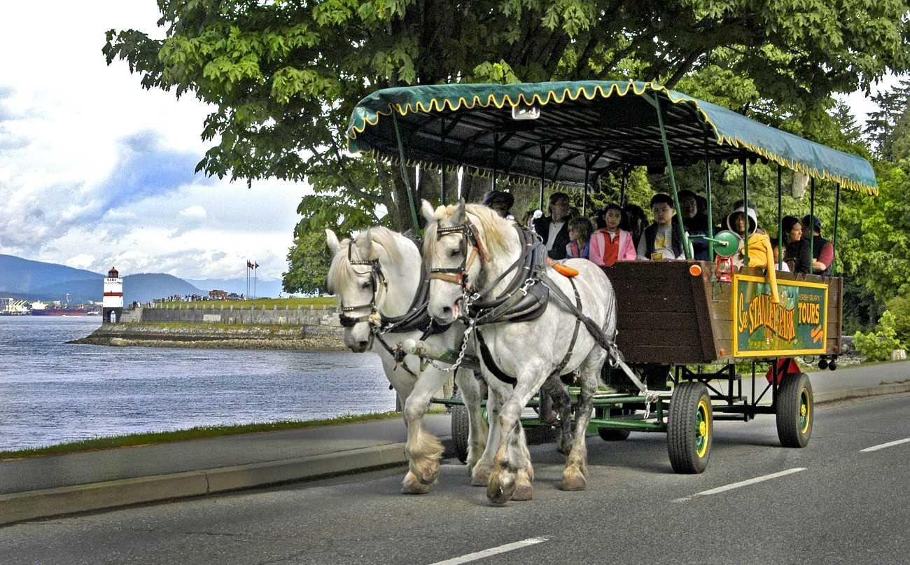 jessica  à Paris EVTStanley_Park_Horse-Drawn_ToursHorse_Tours