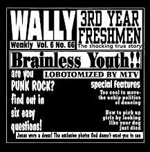 Third Year Freshmen/Wally Split 7""