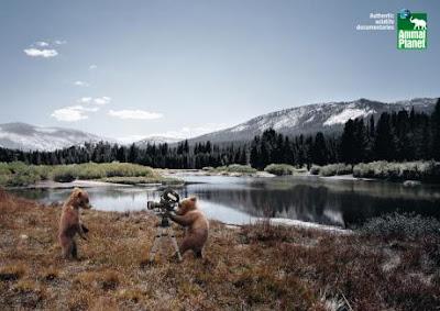 Animal Planet ads
