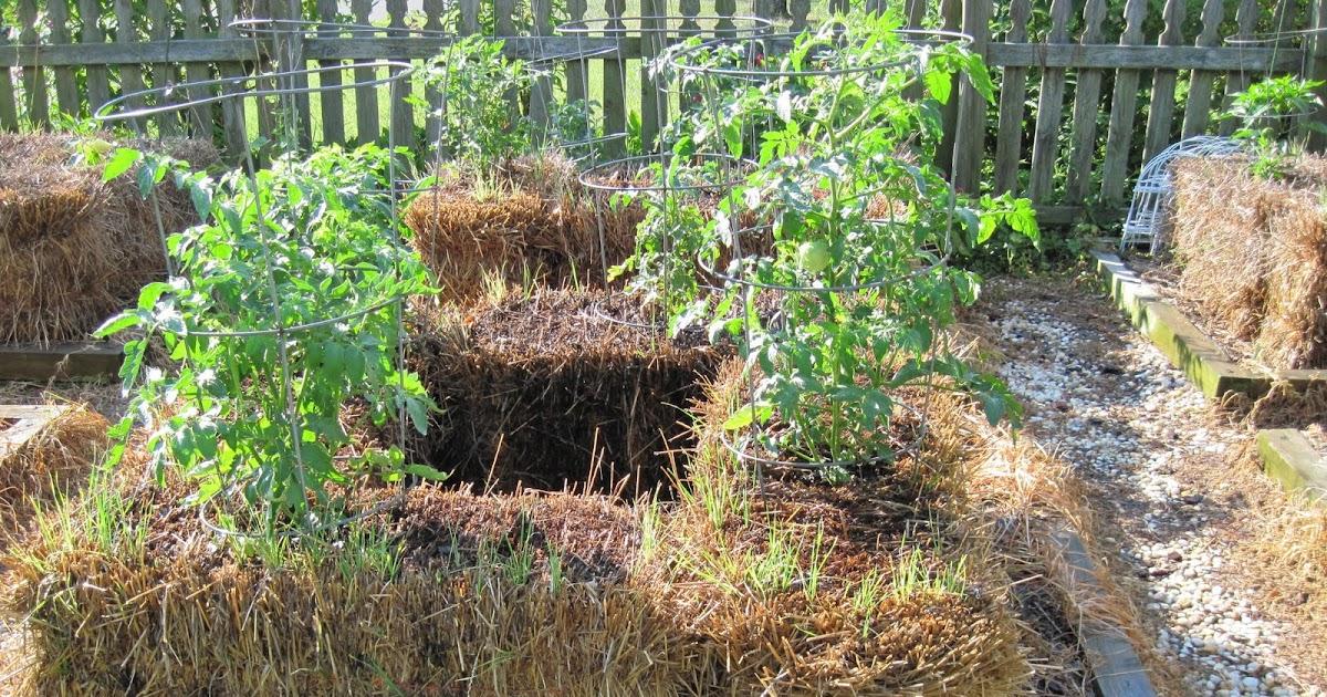 Central Virginia Organic Gardener Straw Bale Gardening
