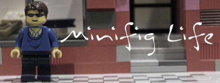 Minifig Life