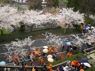 Cherry blossoms outside a wet Nihondaira Stadium