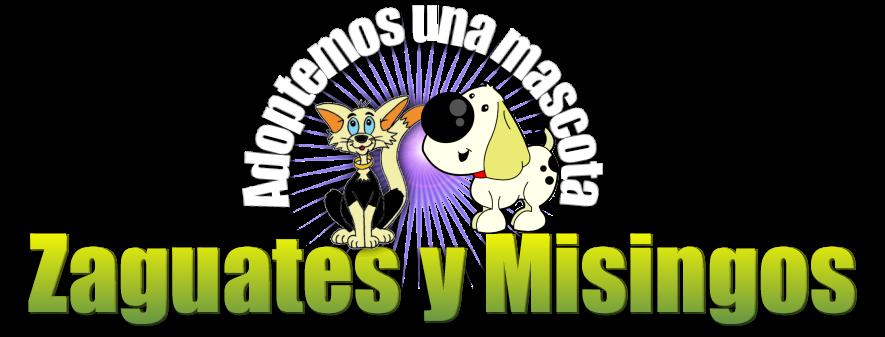 ZAGUATES Y MISINGOS