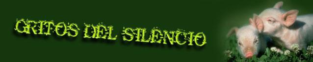 Gritos del Silencio