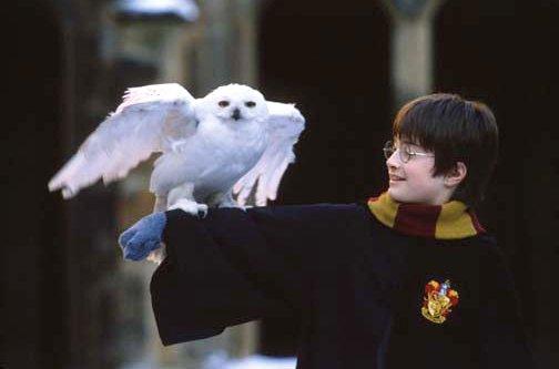 Ποιός/ποιά είναι ο/η αγαπημένος σας ηθοποιός; - Σελίδα 7 Harry+potter+1
