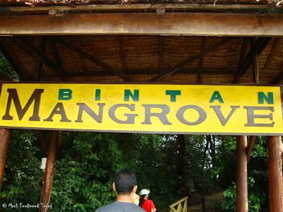 Bintan Mangrove Photo 1