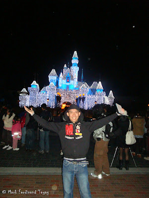 Disneyland Castle Photo 7