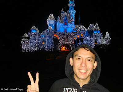 Disneyland Castle Photo 3