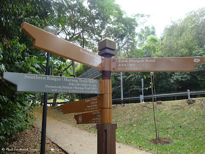 Mount Faber Singapore Hiking Photo 3