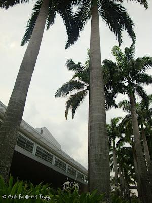 Singapore Expo Batch 1 Photo 5
