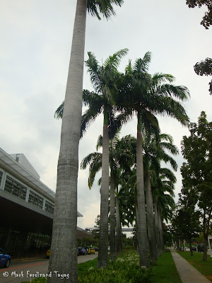 Singapore Expo Batch 1 Photo 4