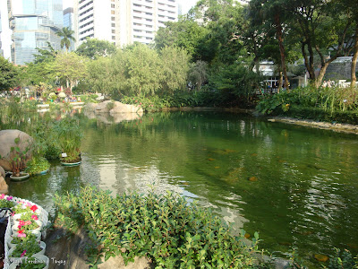 Hong Kong Park Batch 2 Photo 6