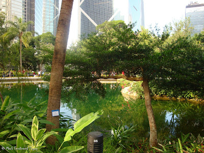 Hong Kong Park Batch 2 Photo 7