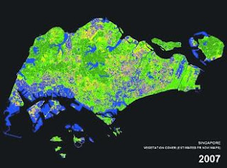 Singapore vegetation 2007