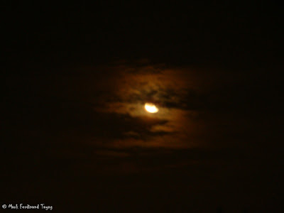 Beautiful Moon Photo 2