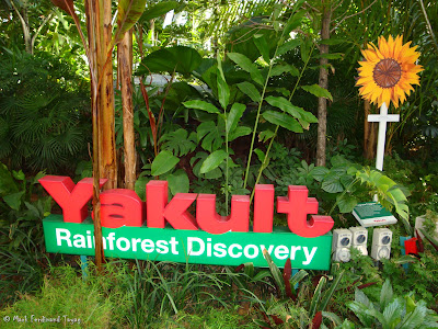 Yakult Rainforest Discovery Photo 1
