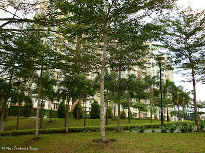 Nee Soon East Park Photo 3