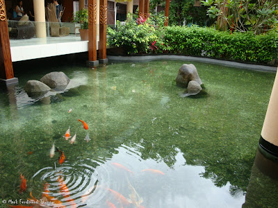 Bintan Lagoon Resort Koi Pond Photo 7