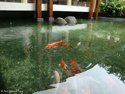 Bintan Lagoon Resort Koi Pond Photo 9
