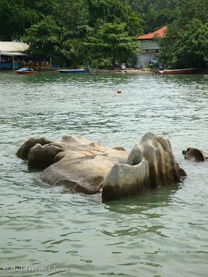 Pulau Ubin Singapore Boat Ride Photo 13