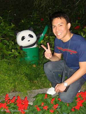 Giant Panda Habitat Ocean Park Hong Kong Photo 14