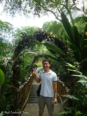 Jurong Bird Park - Heliconia Walk Photo 3
