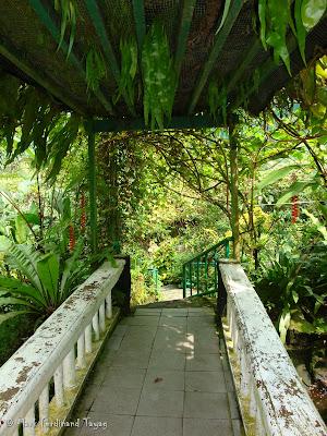 Butterfly Park, Kuala Lumpur Photo 7