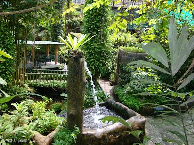 Butterfly Park, Kuala Lumpur Batch 2 Photo 7