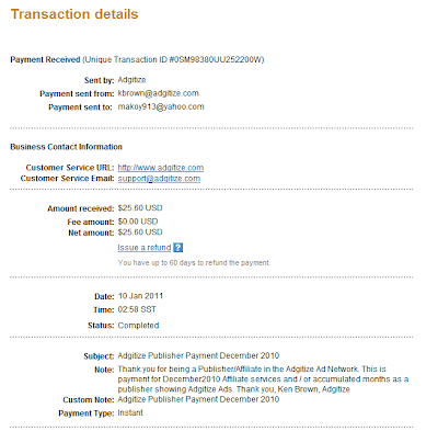 Adgitize Earning: December 2010