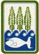 Lagon, pins colonnaires, poisson napoléon