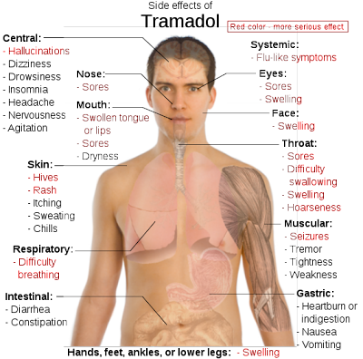 tramadol side effects skin rash