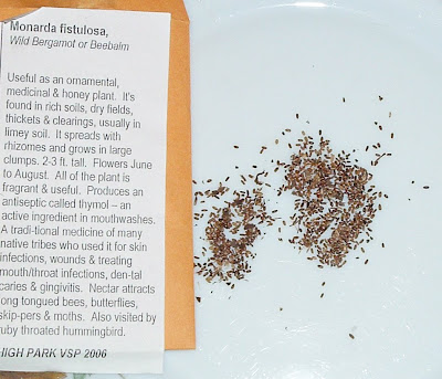 [Photo: Monarda fistulosa seeds. Seed packet reads: Monarda fistulosa, Wild Bergamot or Beebalm. Useful as an ornamental, medicinal & honey plant. It's found in rich soils, dry fields, thickets & clearings, usually in limey soil. It spreads with rhizomes and grows in large clumps. 2-3 ft. tall. Flowers June to August. All of the plant is fragrant and useful. Produces an antiseptic called thymol - an active ingredient in mouthwashes. A traditional medicine of many native tribes who used it for skin infections, wounds & treating mouth/throat infections, dental caries & gingivitis. Nectar attracts long-tongued bees, butterflies, skippers & moths. Also visited by ruby-throated hummingbird. HIGH PARK VSP 2006.]