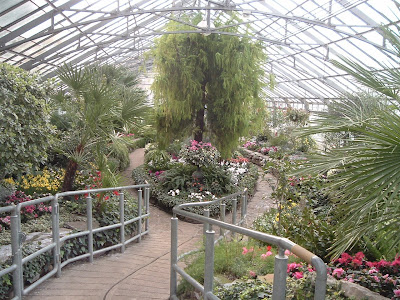 [Photo: south greenhouse.]