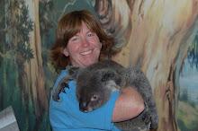 Meeting a Koala