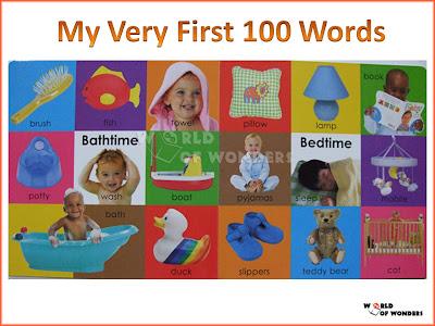 first 100 days book pdf