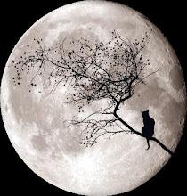 Alguna vez has bailado con el demonio a la luz de la luna?