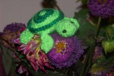schildpadje sleutelhanger