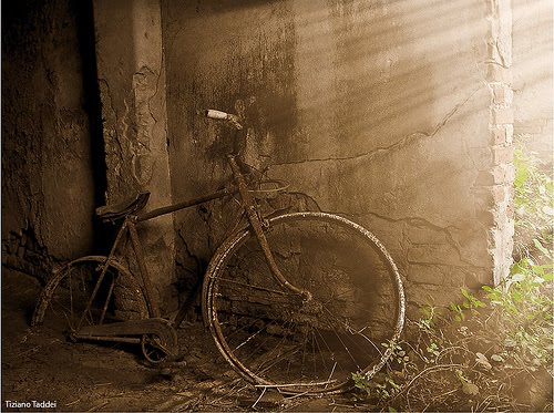 367.Bicycle memories