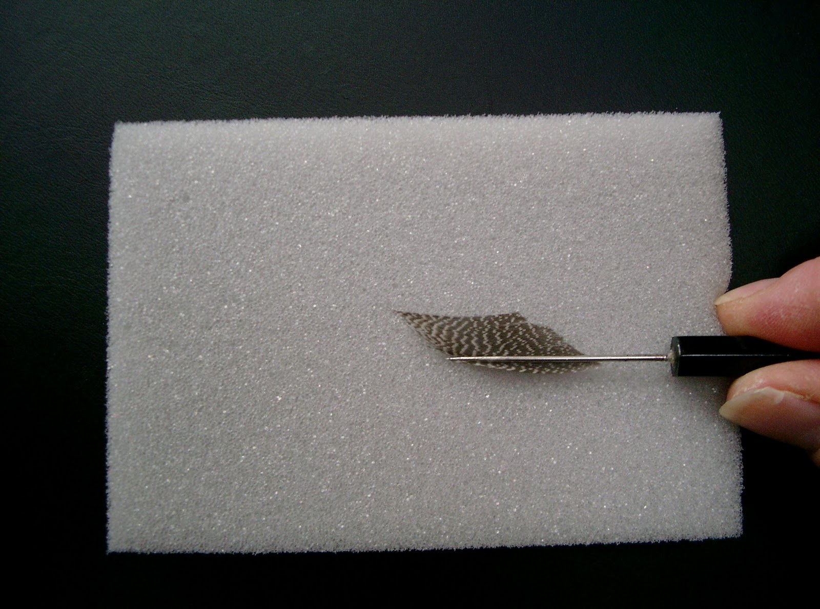 Fly tying world articles 4 use your finger to flatten the feather nvjuhfo Choice Image